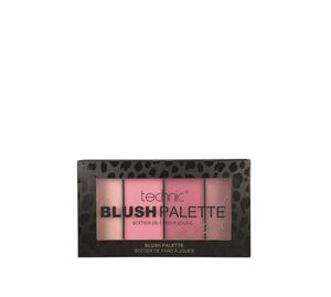Beauty Basket - technic blush palette cool edit