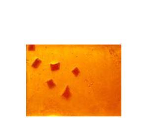 Olive Fruits & Fleurs - Χειροποίητο Σαπούνι Olive Touch