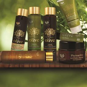 Olive Fruits & Fleurs