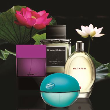 Perfume Stories